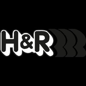 h-e-r-elaborazioni-torino-racing